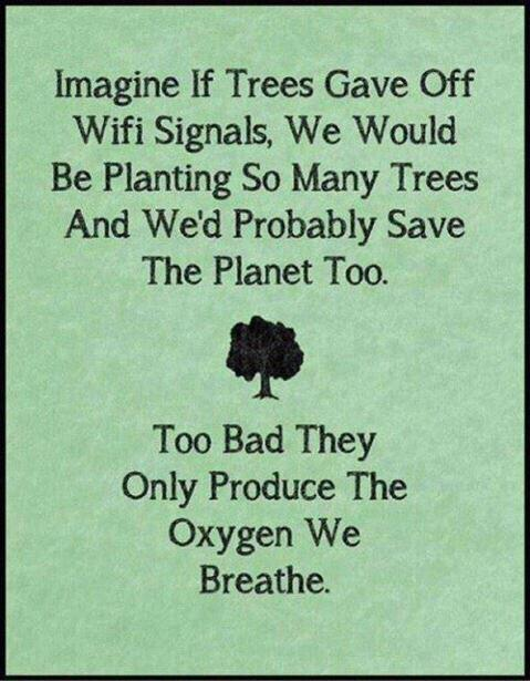 Trees produce oxygen not wifi
