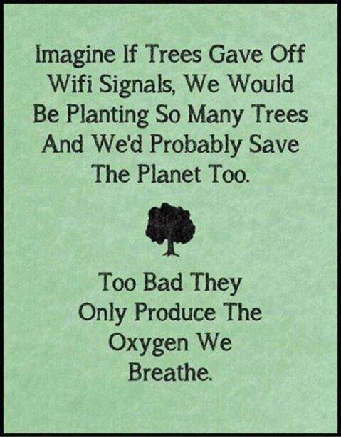 Trees produce oxygen not wifi